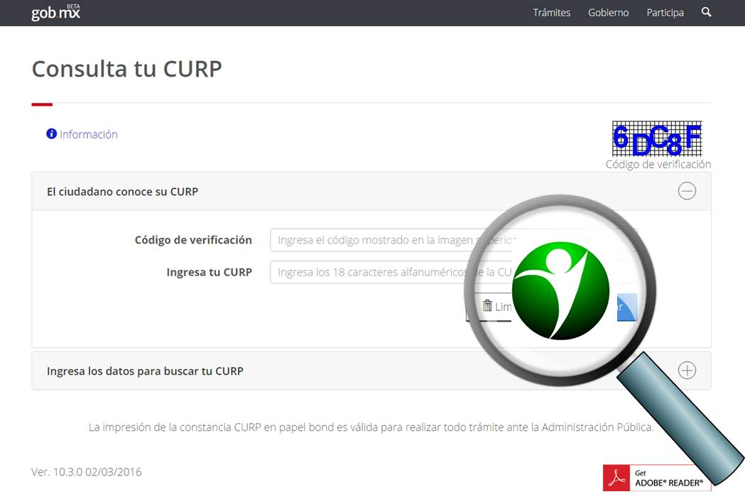 Realizar Consulta en la CURP